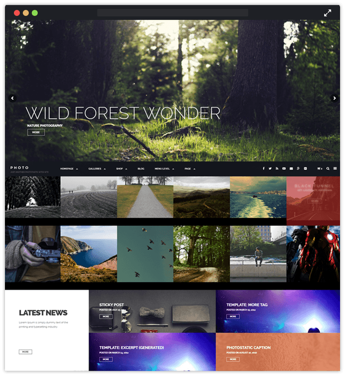 Phototastic WordPress Theme