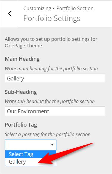 WordPress Portfolio Section InkThemes
