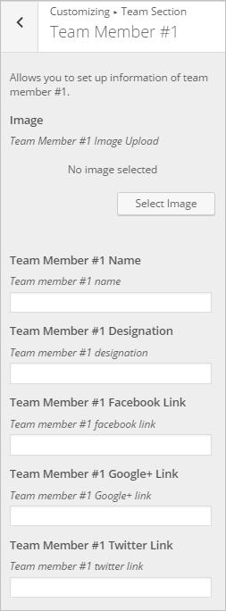 WordPress Team Section InkThemes