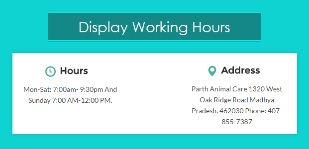 Working Hours-pet-animal-veterinary-wordpress-InkTheme
