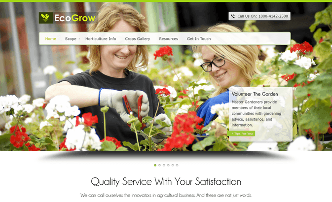 eco grow wp theme