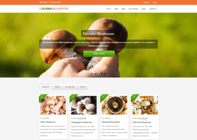 globalmushroom WP Theme