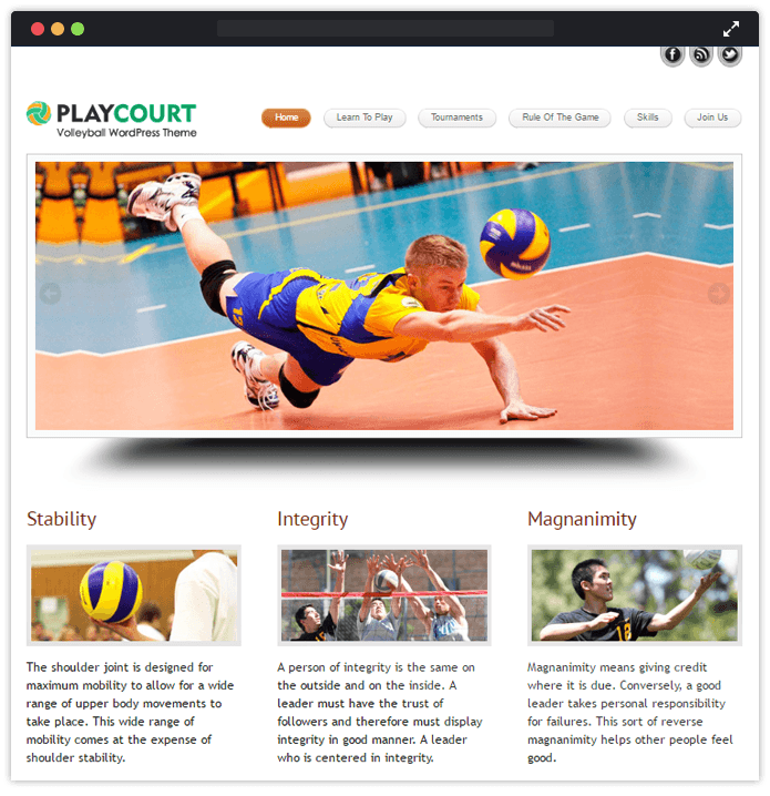 playcourt wp theme