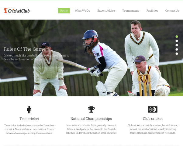 cricket club wp theme