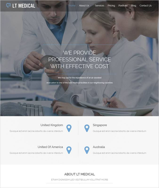LTMedical WP theme