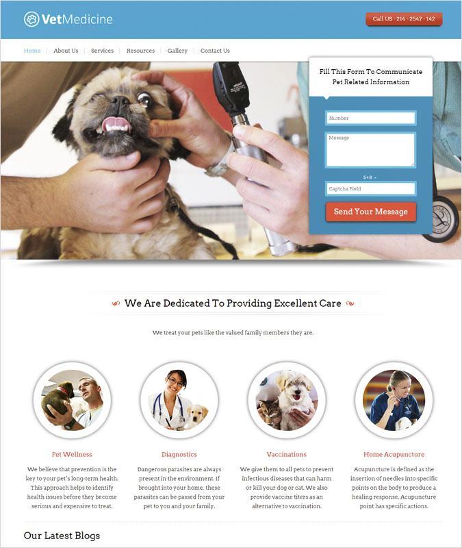 VetMedicine WP theme