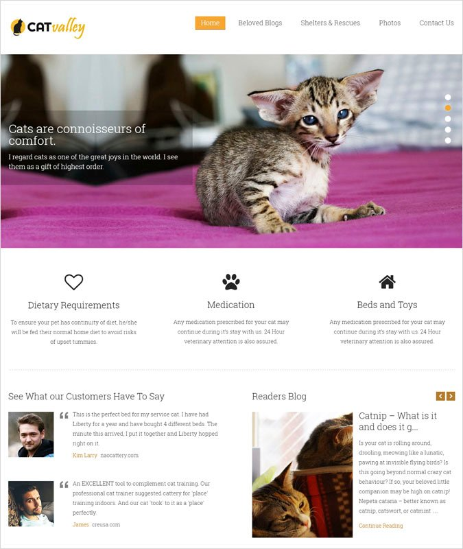cat valley wp theme
