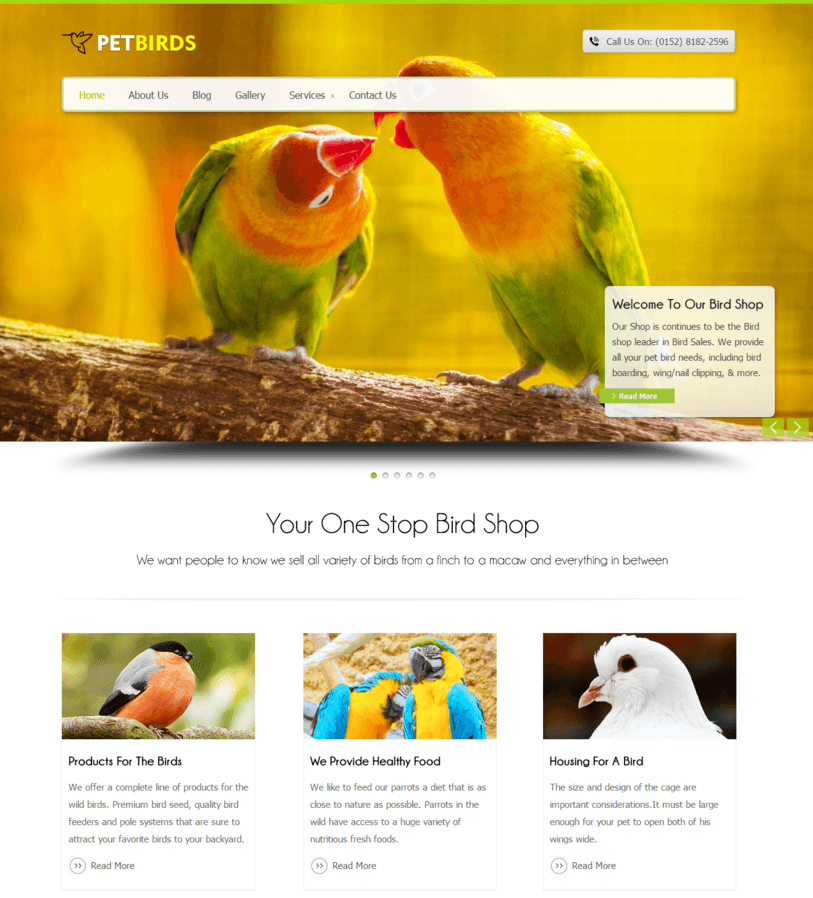 pet-bird-wordpress-website-for-animal