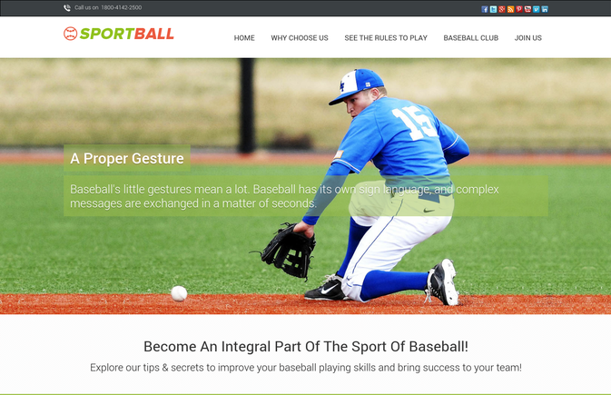 sports ball wp theme