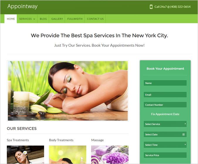 Appointway WordPress Theme