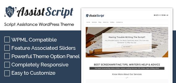 Script Assistance WordPress Theme