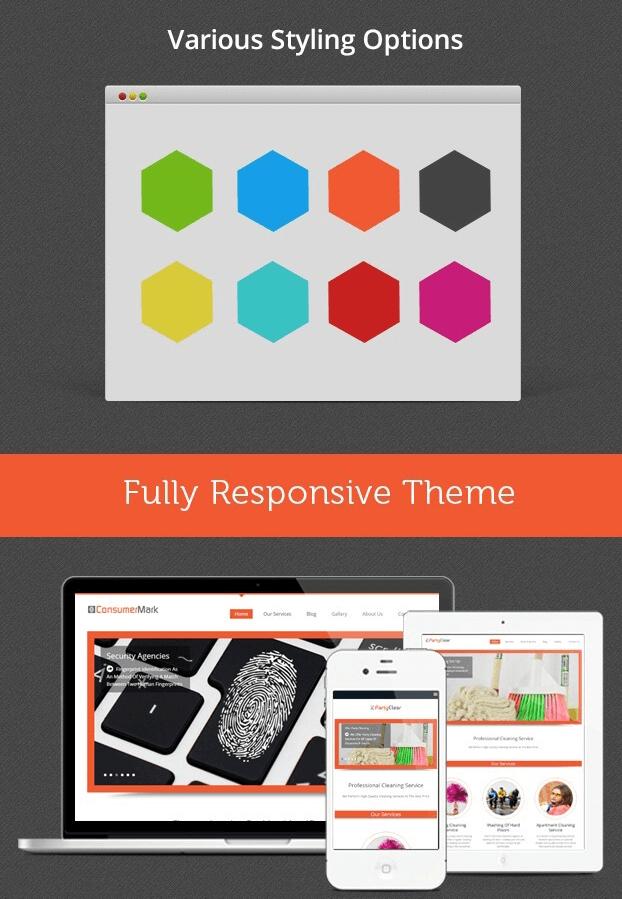Various Styling options - Fingerprinting Service WordPress Theme