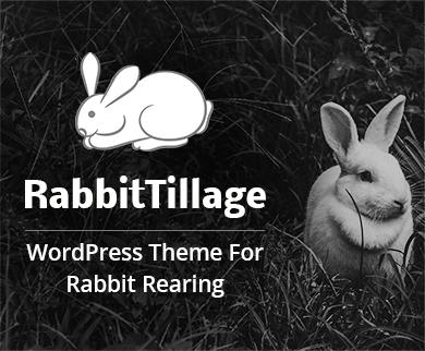 Rabbit Tillage - Rabbit Rearing WordPress Theme & Template