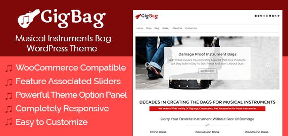 Musical Instruments Bag WordPress Theme & Template