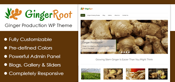 Ginger Production WordPress Theme
