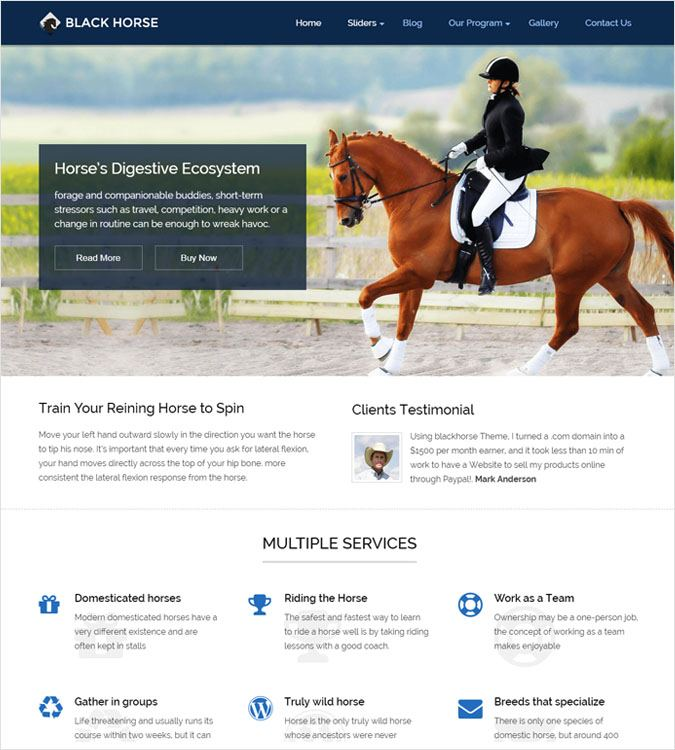 BlackHorse WP theme