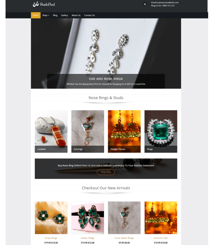 Ear And Nose Rings Sale WordPress Theme