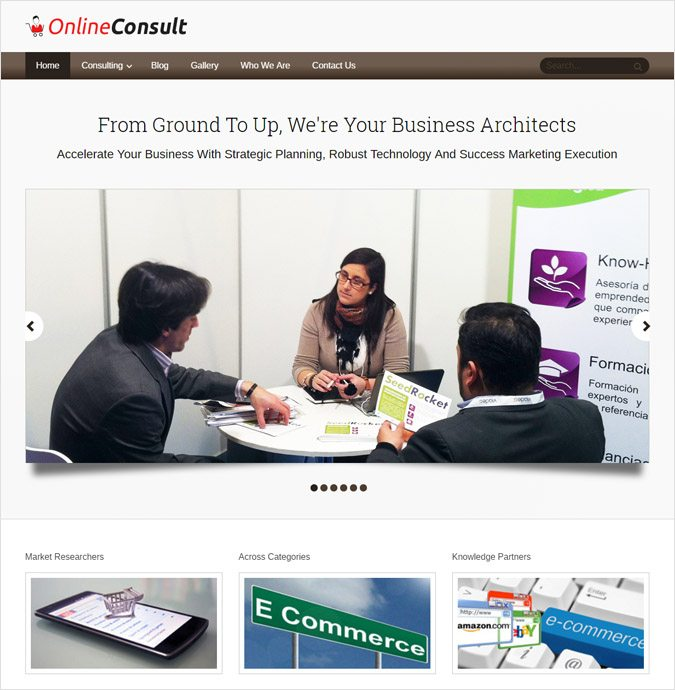 OnlineConsult WP theme