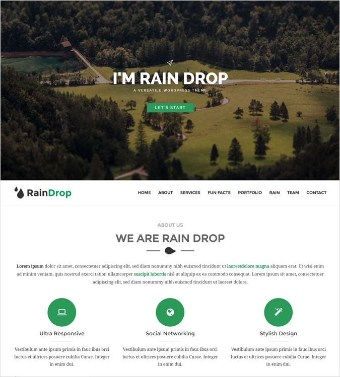 RainDrop WordPress Theme
