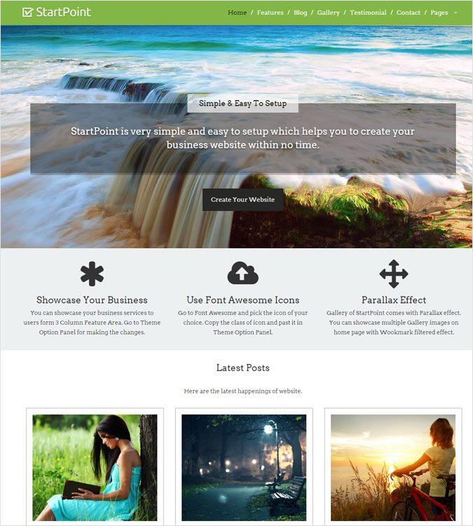 StartPoint WP theme