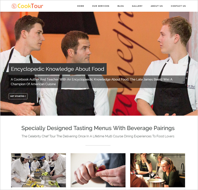 celebrity cook wordpress theme