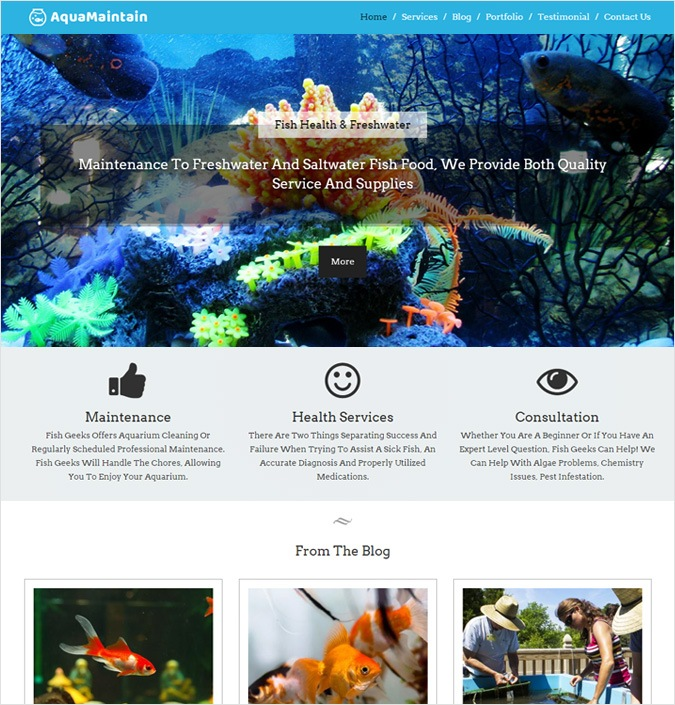 AquaMaintain WP theme