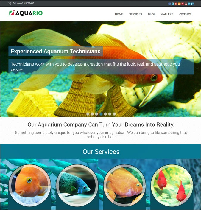 Aquario WP theme