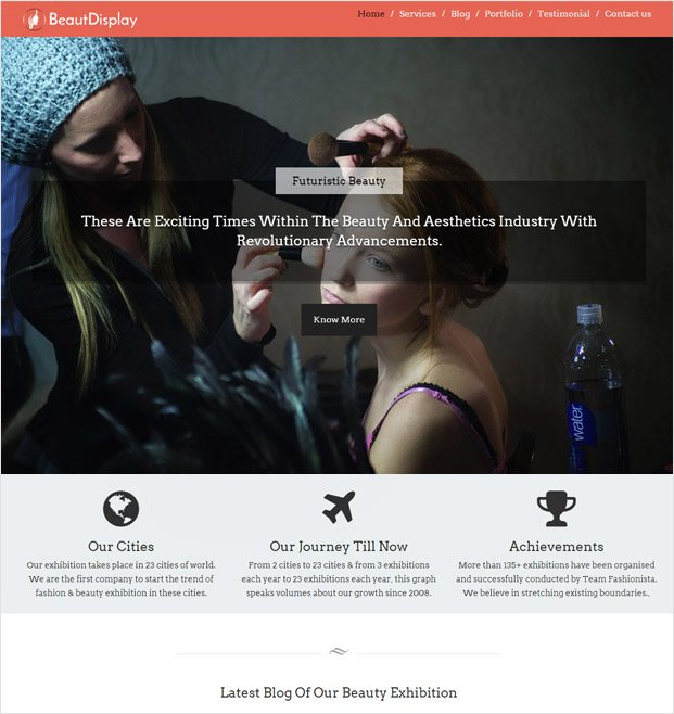 BeautDisplay WP theme