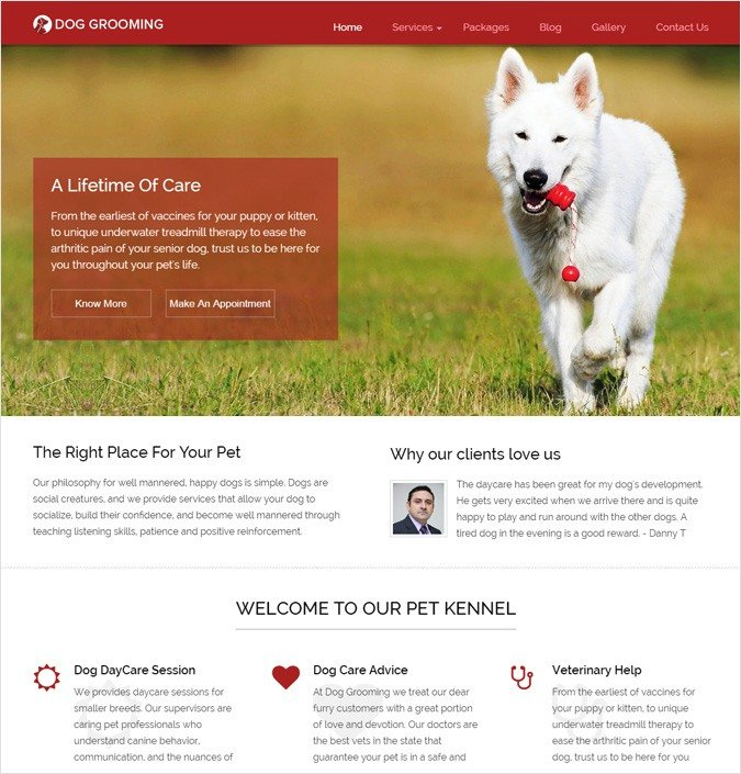 Dog & Pets Grooming WordPress Theme