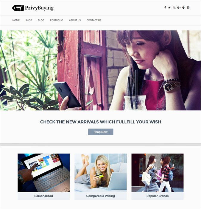 PrivyBuying wp theme