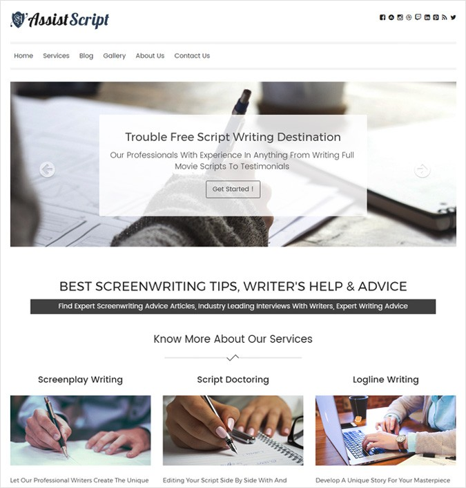 Script Assistance WordPress Theme