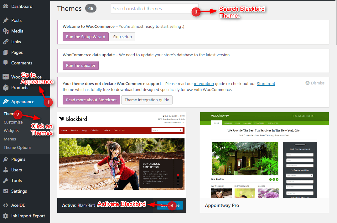 BlackBird WordPress Theme