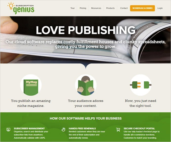 SubscriptionGenius Revenue Optimization Tool