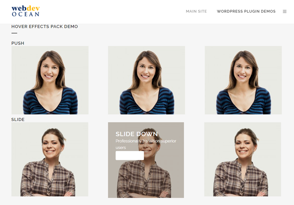 Hover Effects Demo - Image Hover Effects Plugin