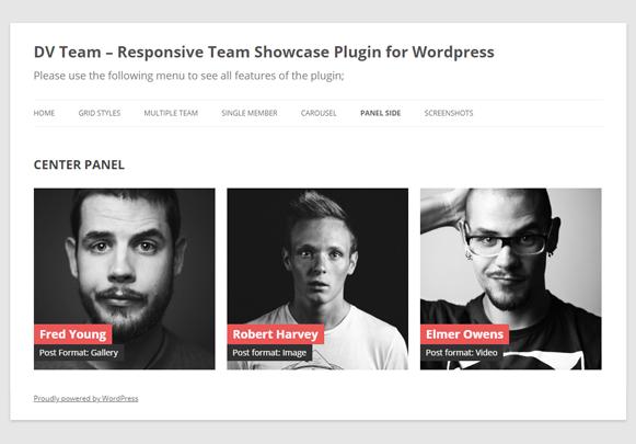 Home - DV Team Showcase WordPress Plugin