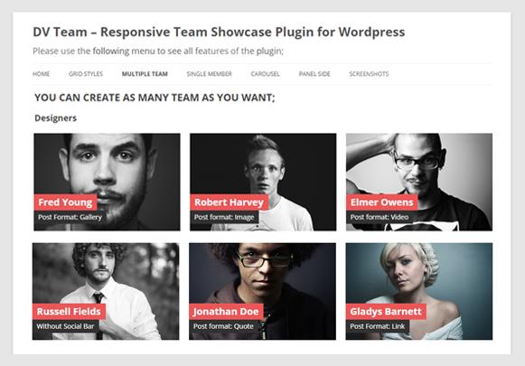 Multiple Team - DV Team Showcase WordPress Plugin