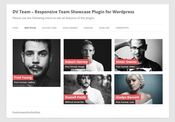 Masonry Grid - DV Team Showcase WordPress Plugin