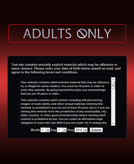 Adult only validation wordpress plugin