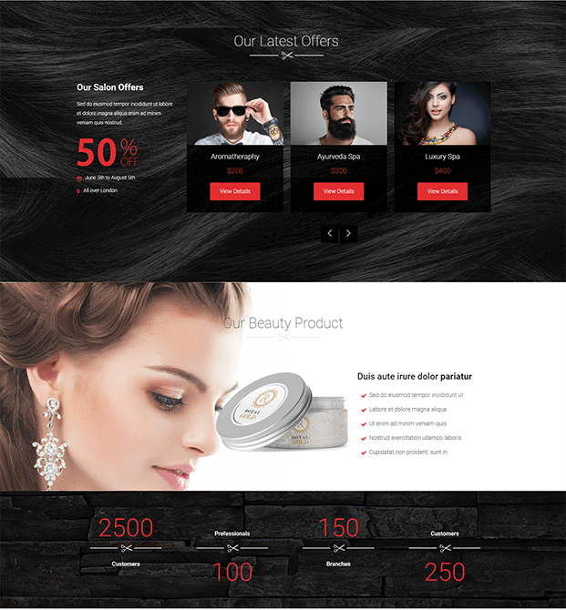 Products - WordPress Theme For Hair Salon
