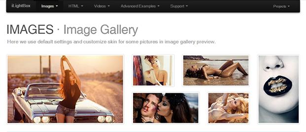 Image Gallery - iLightBox WordPress Plugin