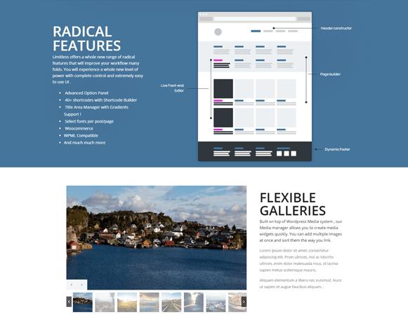 Features - WordPress Multipurpose Theme