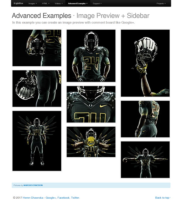 Image Preview+Sidebar Example - iLightBox WordPress Plugin