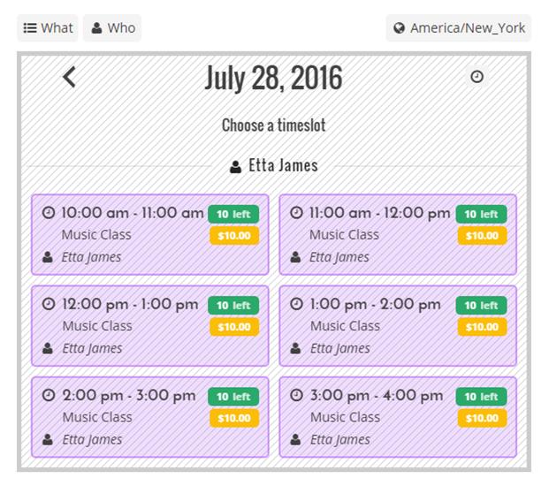 Choose A Timeslot - Team Booking WordPress Plugin