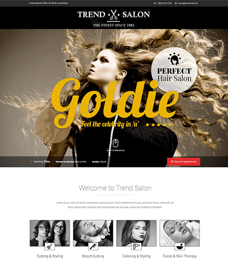 WordPress theme for hair salon