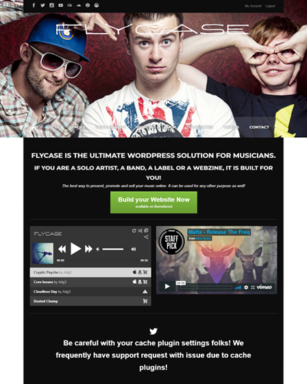 Flycase WordPress theme for musicians
