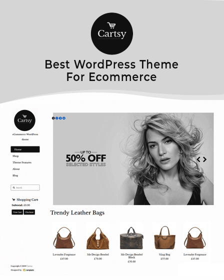 Cartsy - Best WordPress Theme For Ecommerce