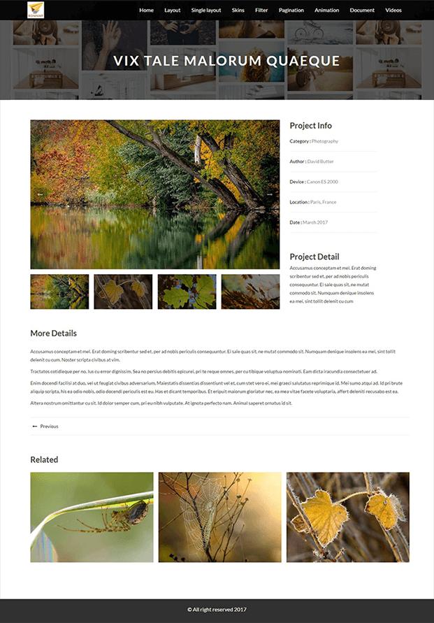 Vixtale - Portfolio WordPress Plugin