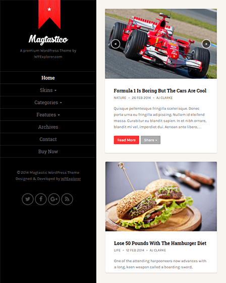 Responsive WordPress Theme For Blog