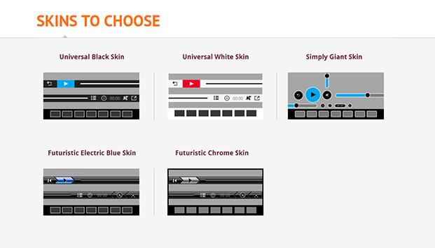 HTML5 Video Player WordPress Plugin - Skins To Choose