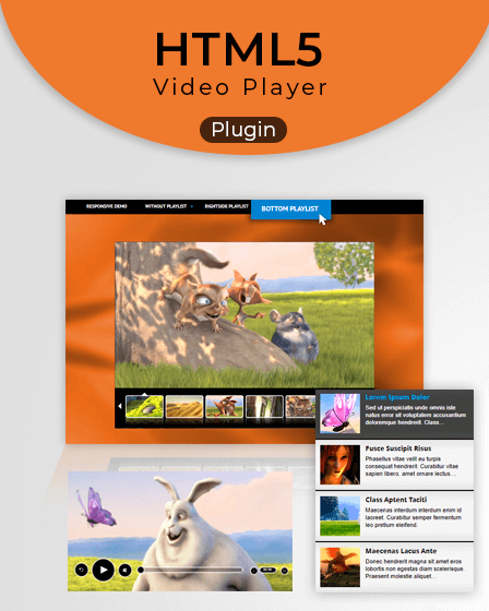 Video Player WordPress Plugin
